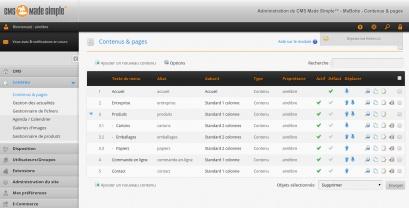 Interface de gestion avec liste des pages du site
